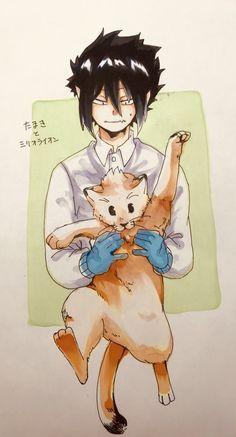 Tamaki Amajiki & [Cat] Mirio Togata