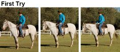 Last month, I showed you how lateral bending can help lower a too-high head. This month, working with the same 7-year-old Appaloosa gelding, I'll show you how to ask a horse to flex at the poll...