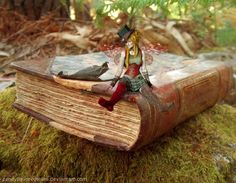 Book Fairy by ~CandyFlavoredTears