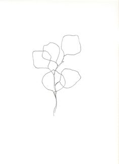 abstracted silver dollar eucalyptus shapes designed and drawn as a study of my many years working as a florist and a lover of greenery if you...