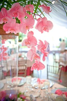 Pink Orchid centerpieces  #pink #orchids #wedding Wow... I don't normally like tall centerpieces, but these are really pretty!!