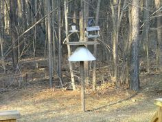 Picture of Bird Feeding Station With Squirrel Baffle