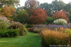Knoll Gardens - Autumn