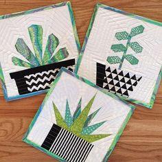 Succulent Trio Quilt Block Patterns - x Paper Pieced Quilt Patterns, Beginner Quilt Patterns, Quilting For Beginners, Quilt Block Patterns, Pattern Blocks, Paper Piecing, Quilt Blocks, Easy Quilts, Mini Quilts