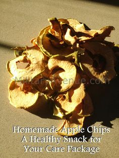 Homemade Apple Chips for your Next Care Package