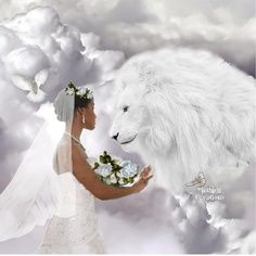 """White Lion of Judah and Bride of Christ. """"I am my beloved's, and my beloved is mine . """" Solomon ~ Lion of Judah, our soon coming King ~ Braut Christi, Walk In The Spirit, Shadow Of The Almighty, Tribe Of Judah, Images Gif, Bride Of Christ, Jesus Is Coming, King Jesus, Prophetic Art"""