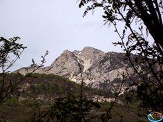 #Eventi #festa ta #Mont 2014 su: 3ntinoaltoadige.it http://www.3ntinoaltoadige.it/index.php?option=com_content&view=article&id=247%3Aeventi-festa-ta-mont-2014&catid=200%3Aeventi-trentino-2014&Itemid=287&lang=en