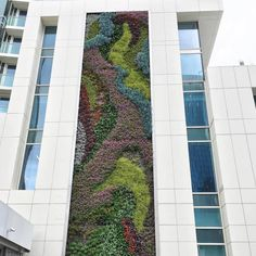 Habitat Horticulture | Living Wall designed to withstand San Francisco winds (up to 100 mph!). Designed by David Brenner.