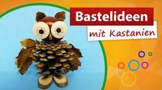 ♥ Bastelideen mit Kastanien ♥  Tannenzapfen basteln - trendmarkt24