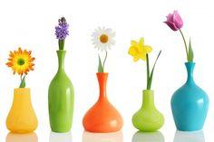 Colorul-Flower-Vases