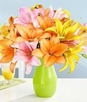 proflowers promo code april 2015