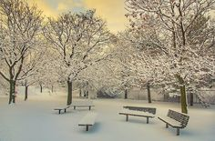 Pull up a chair! Beautiful #winter day in #RochesterNY shared by Jerome D. #ThisIsROC #ROC