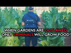 When Gardens Are Outlawed, Only Criminals Will Grow Food (Video) | Self-Sufficiency | Before It's News