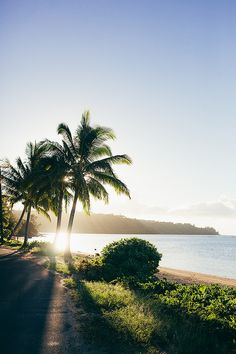 Kauai by dylonyork, via Flickr