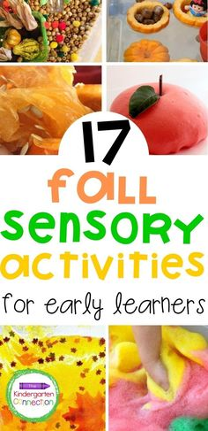 When fall comes around, it's time for leaves, apples, pine cones, pumpkins, and all things nature. Bring the nature to your preschoolers and kindergarteners with these fun, fall-themed sensory activities. These educational activities are all classroom-friendly (some of these activities are best suited for outdoors due to potential mess). There is no end to learning when you're discovering a sensory bin! #learningactivities #preschool #kindergarten #sensorybins