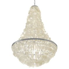 Kouboo Manor 3 Light Capiz Seashell Chandelier & Reviews | Wayfair