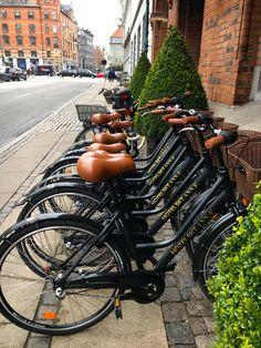 Ascot Hotel (Copenhague): 825 fotos, comparação de preços e 13 avaliações