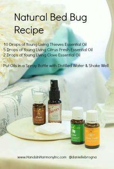 Diy Bed Bug Spray With Essential Oils Oils Pinterest