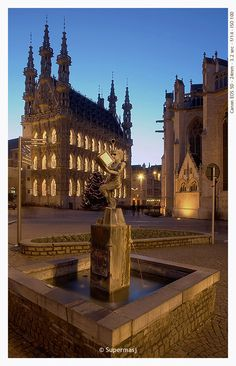 Town Hall of Louvain