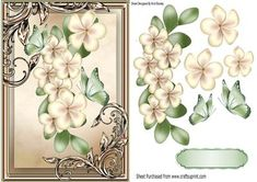 Pretty cream flowers with green butterflies in ornate frame on Craftsuprint…