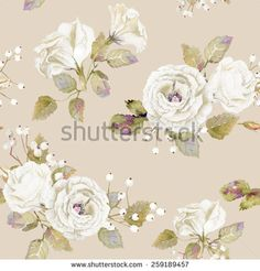 Seamless pattern of vector watercolor white  roses. Vector illustration of…
