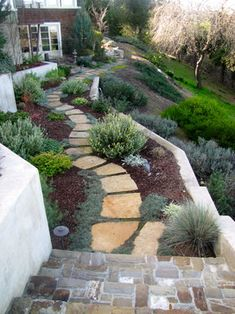 Hill Landscape Design Ideas, Pictures, Remodel, and Decor - page 15