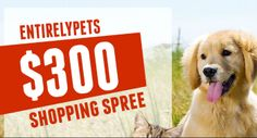 EntirelyPets Giveaway Win An EntirelyPets $300 Shopping Spree! http://www.entirelypets.com/300giveaway.html via @EntirelyPets.com