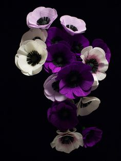 crepe paper anemones in white and purple, hand crafted by Papetal  crepe paper flowers, paper craft, hand made, DIY flowers