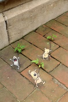 David Zinn -  May 31, 2016 -   The Seedling Parade Corps: two-thirds unbridled enthusiasm, one-third seething disapproval.