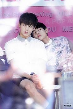 Tae Tae sleeps on everyone