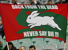 South Sydney Rabbitohs | 'Back From The Dead - Never Say Die' | #SouthSydneyRabbitohs #history #support Fan Picture, Rugby League, Great Team, Football Team, Rabbits, Cheerleading, The Man, Bunnies, Sydney