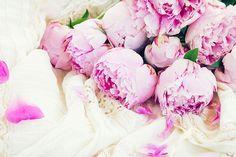 Pink peonies and white wedding dress, vintage style by Anastasy Yarmolovich #AnastasyYarmolovichFineArtPhotography  #ArtForHome #Flowers