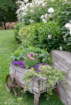 Unique Container Ideas for Garden Planting | Equally rustic is this old wooden wheelbarrow I found at a vintage shop. It is the perfect container for trailing greenery and seasonal color. I love the way this looks sitting on the lawn. It adds a nice country feel to the yard. Unique Gardens, Rustic Gardens, Small Gardens, Diy Garden Projects, Diy Garden Decor, Diy Decoration, Wheelbarrow Planter, Garden Cottage, Garden Planters