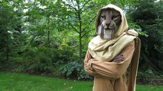 Post with 288870 views. Skyrim Cosplay - M'aiq the Liar Cat Urine Remover, Pet Urine, Pet Odors, Skyrim Cosplay, Pc Console, Lions Gate, Elder Scrolls, Media Images, Find Pets