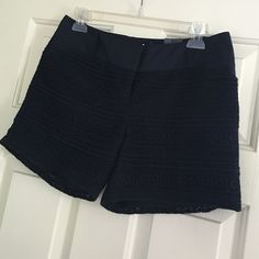 The Limited: Navy Crochet Shorts Stylish summer shorts coming your way! Never worn, NWT, navy, crochet, lined shorts. The Limited Shorts