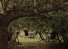 The Orchard Tea Garden, Granchester, Cambridgeshire--this is one of my favorite places in the world <3 <3 <3 <3 <3 <3