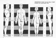 Clay To Bronze: Human Proportion for Figure Drawing: The Ultimate Guide