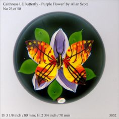 Caithness  LE Butterfly paperweight - colourful 3D design  (www.pwts.co.uk  ref. 3852)
