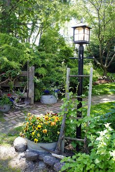 Garden Tour 2011. I just loved the combo of the lamp, ladder, and climbing plant!