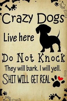 ALWAYS!! But...I don't yell. They are part of my alarm system!!