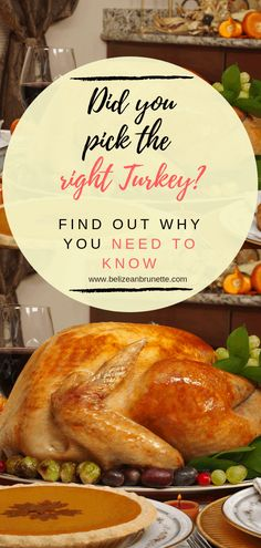 Did you pick the right Turkey for Thanksgiving? Avoid harmful products in your turkey and learn all about the different kinds available! Chicken Soup For Colds, Low Carb Chicken Soup, Homemade Chicken Soup, Chicken Soup Recipes, Lunch Recipes, Healthy Recipes, Healthy Nutrition, Healthy Tips, Healthy Food