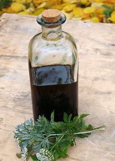 Byliny v muzeu: Bylinný medový likér – připravte si skvělou domácí medicínu Korn, Vodka Bottle, Remedies, Alcohol, Herbs, Smoothie, Tea, Drinks, Desserts