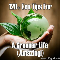 120+ Eco Tips For A Greener Life (Amazing!) - Off-Grid