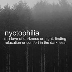 Nyctophilia. what a pretty word- Nycto= night, nocturnal or darkness, Philia= form of love