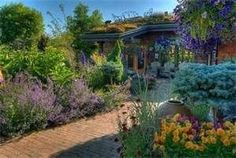 The high desert can be very green:  varieties of planting from evergreens to succulents.