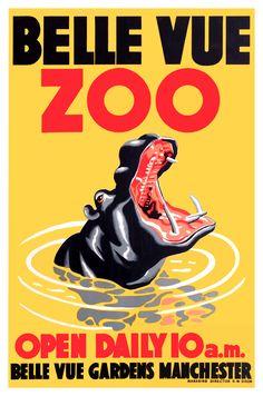 1950 Belle Vue Zoo Hippopotamus Poster by Retro Graphics Vintage Advertising Posters, Vintage Travel Posters, Vintage Advertisements, Poster Vintage, Art Illustration Vintage, Zoo Art, Zoological Garden, Poster Design Layout, Plakat Design