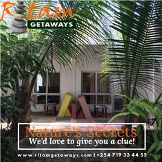 If you are looking for somewhere green, calm and quiet... Nature Secret, Self Catering Cottages, Color Collage, Large Windows, Bed And Breakfast, Great Places, Rustic Decor, Swimming Pools, The Neighbourhood