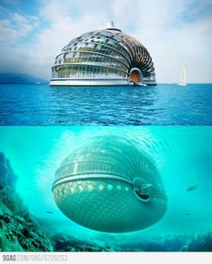 An underwater hotel in China. Why doesn't anyone ever tell me about this stuff? #bucketlist