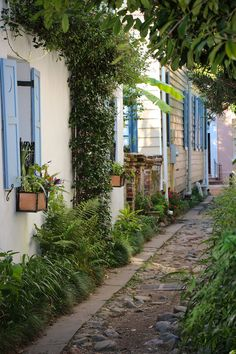 Longitude Lane, Charleston,SC