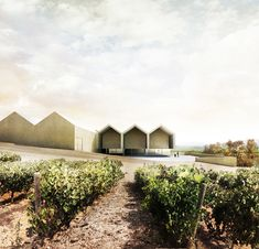 Drawings realized for Emilio Tuñón Architects for the Architectural Ideas Competition of the Benjamin de Rothschild & Vega-Sicilia Winery in Samaniego (Spain). Architecture Graphics, Architecture Visualization, Architecture Drawings, Concept Architecture, Architecture Details, Interior Architecture, Architecture Diagrams, Impression 3d, Interesting Buildings